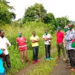 STDF Cameroon: Support to Penja Pepper GI staff