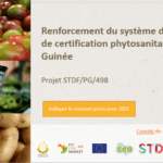 STDF Guinea: increasing the phytosanitary control and certification system