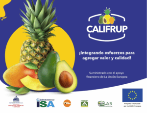 califrup and partners