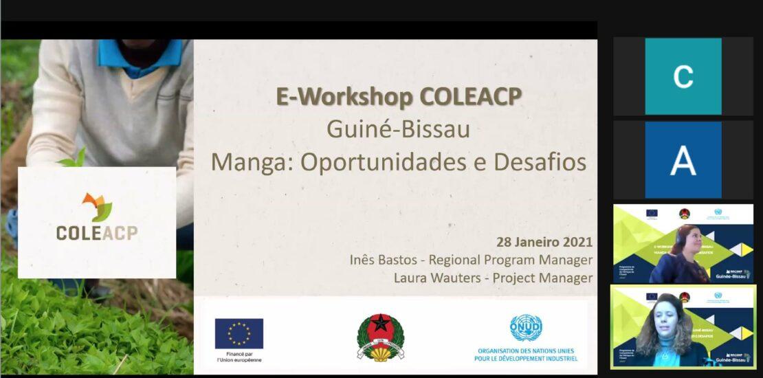 workshop Guiné Bissau WACOMP UNIDO