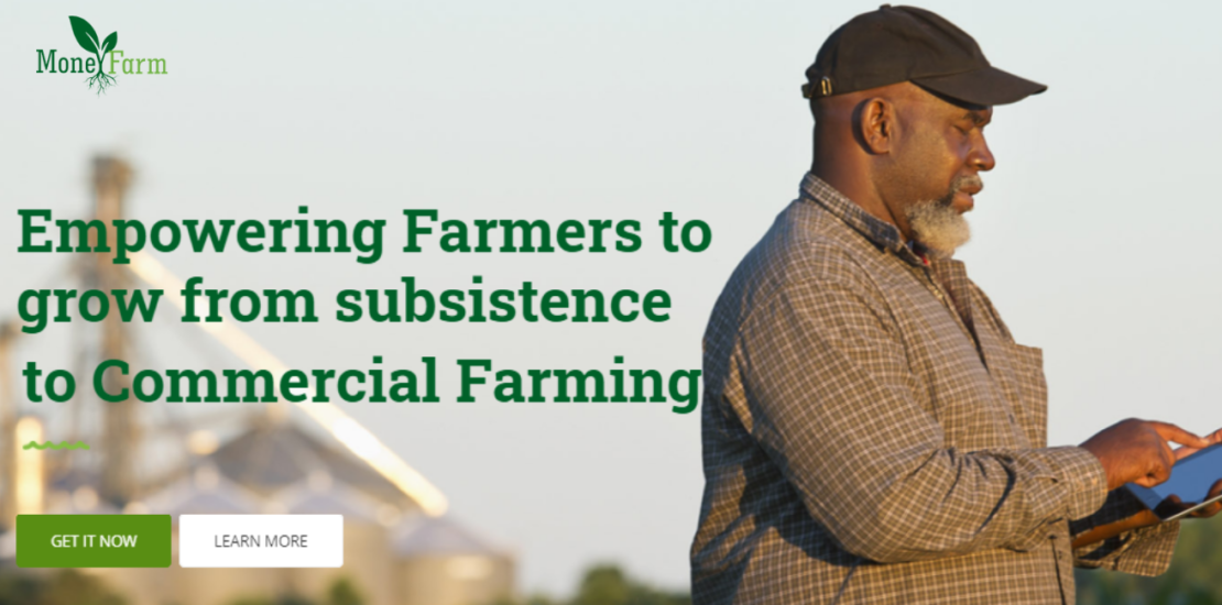 MONEY FARM (The Gambia) – a horticulture crowdfunding platform