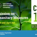 15ème session de la Commission des mesures phytosanitaires en mars/avril