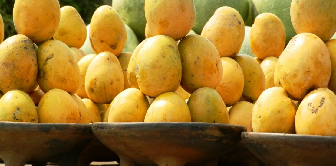 mangoes exposed