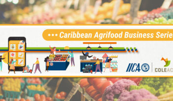 Caribbean Agrifood Business Series