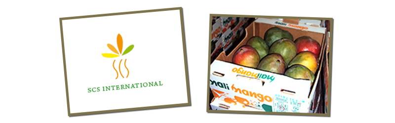 Service Commercial Silvain International SARL - Mali