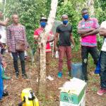 Cameroun : Formation collective sur l'usage sécurisé des pesticides dans le bassin du Loum